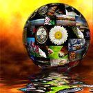 My World by Kym Howard