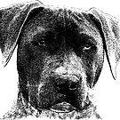 Dog by M-a-k-s-y-m