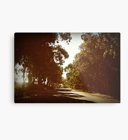 when the truth is, i miss you... Metal Print