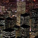 High rise buildings by snehit
