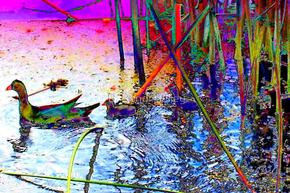 Stained glass moorhens by ♥⊱ B. Randi Bailey