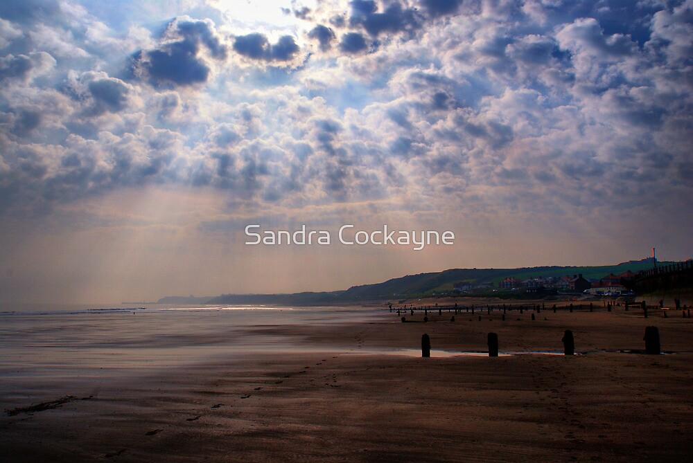 Rays Of Sunshine by Sandra Cockayne