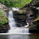 A New Summer Begins At Murray Reynolds Falls by Gene Walls