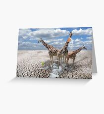 Carry water to the desert Greeting Card