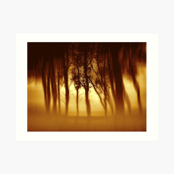 Morning Tree Silhouette(Sepia) Art Print