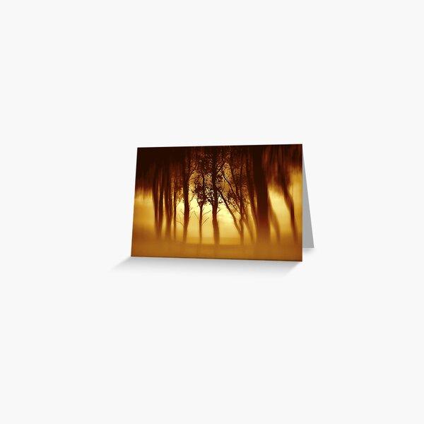 Morning Tree Silhouette(Sepia) Greeting Card