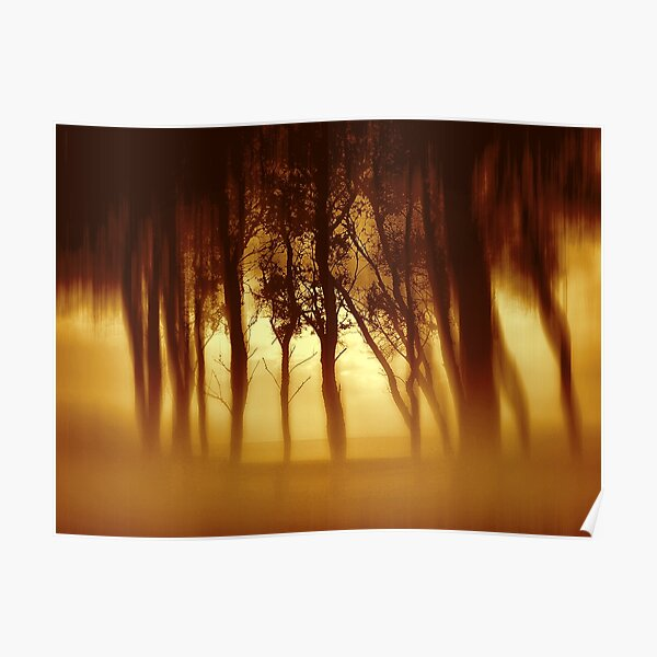 Morning Tree Silhouette(Sepia) Poster