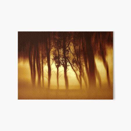 Morning Tree Silhouette(Sepia) Art Board Print