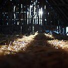Hay Tracks by MaryCatherine27