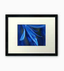 hey, there's not a cloud in the sky...it's as blue as your goodbye Framed Print