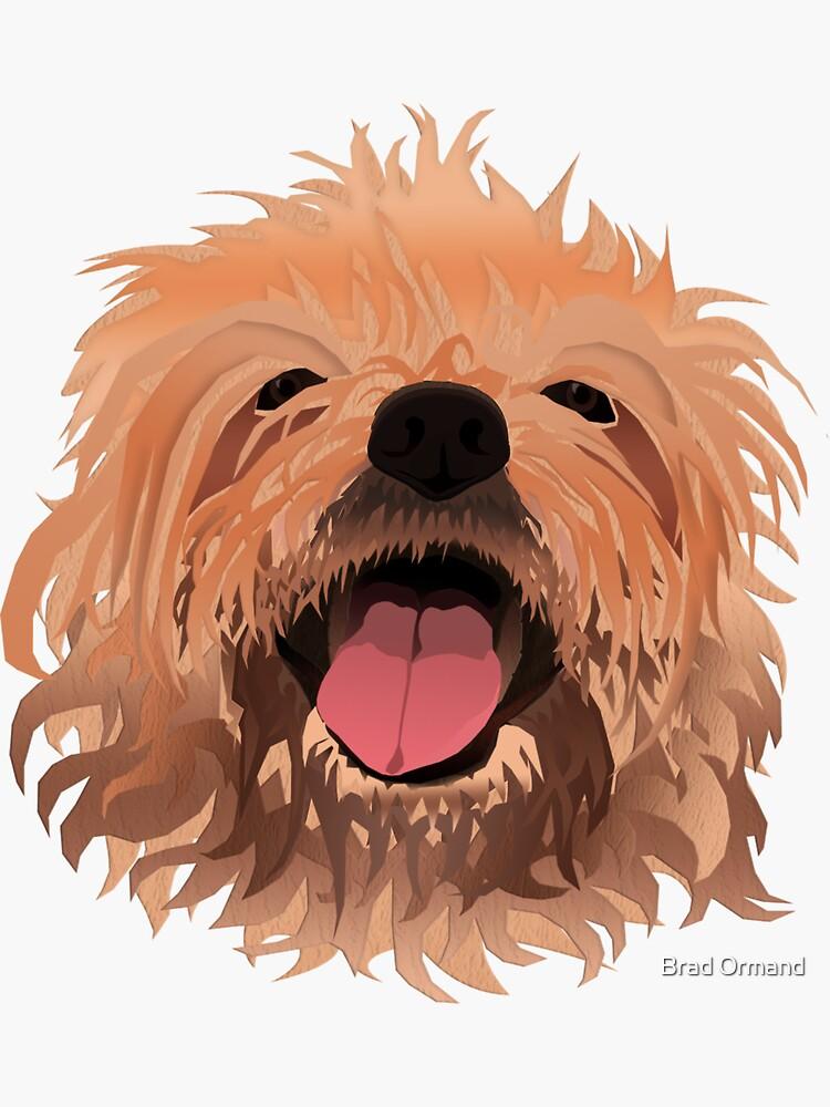 Furry Scruffy Dog by BradOrmand
