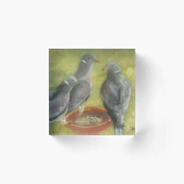 Band-Tailed 2 (pastel) Acrylic Block