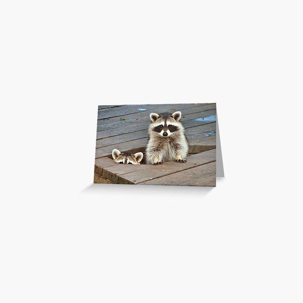Peek-A-Boo Greeting Card