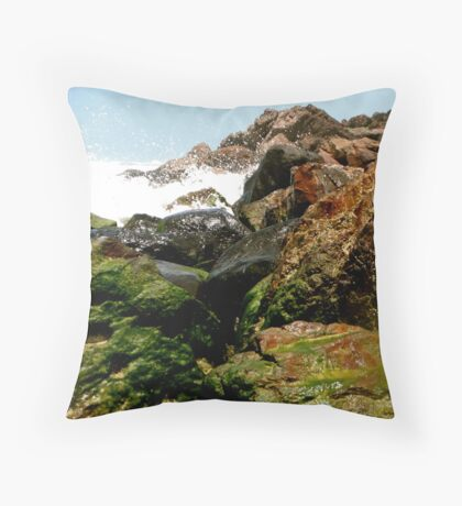 Moss on the Rocks Throw Pillow
