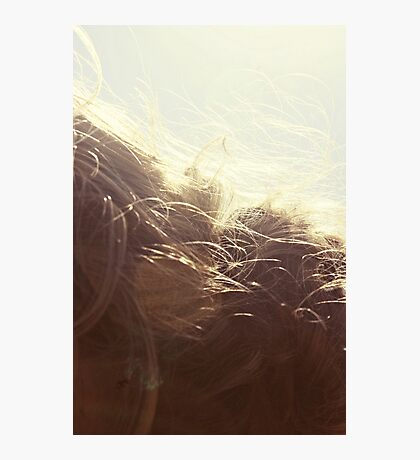    sweet oh luscious life    Photographic Print