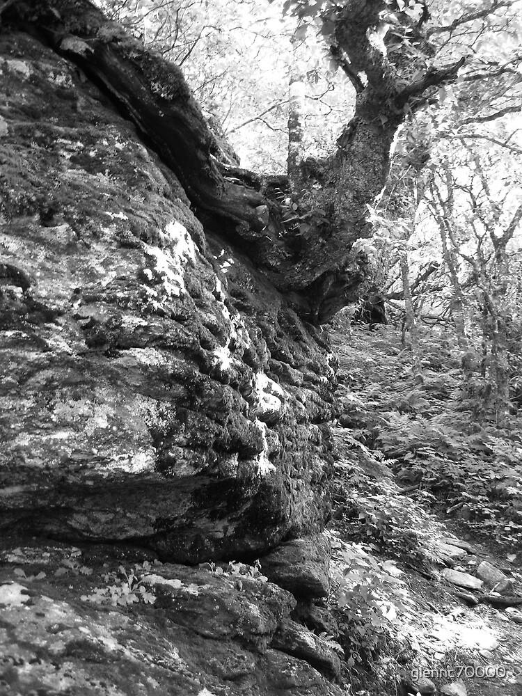 Advantageous Outcrop - Blue Ridge Parkway by glennc70000