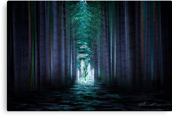 Soul Tree by Svetlana Sewell