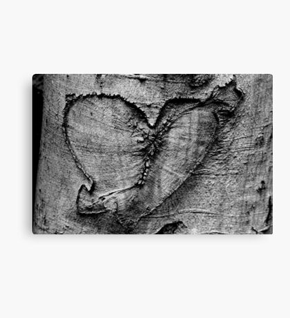 Carved Heart Canvas Print