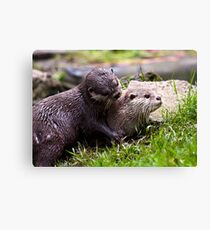 Just one kiss please! Canvas Print