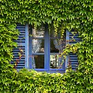 Blue and Green by CreativeUrge