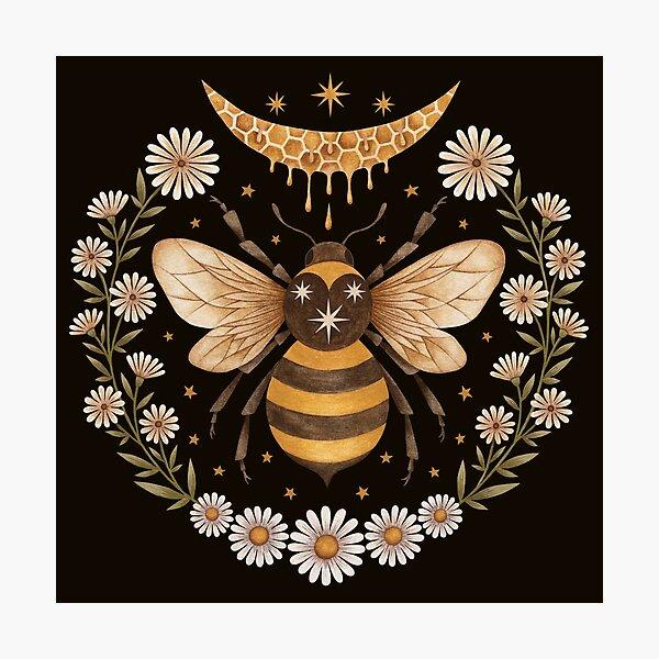 Honey moon Photographic Print