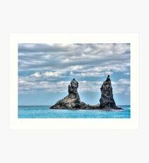 Japanese sea Art Print