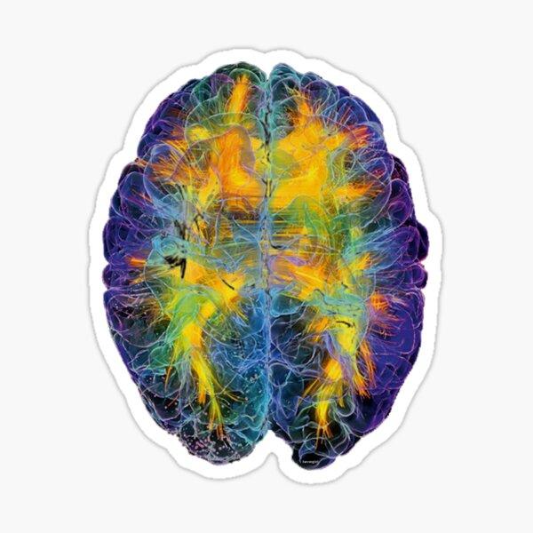 Brain Power Sticker