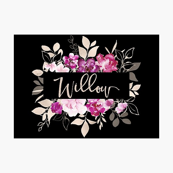 Pretty Ink Willow Photographic Print