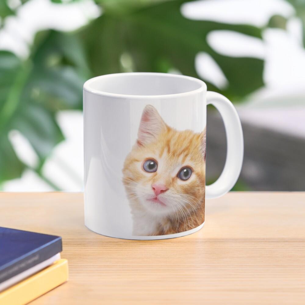 I'm Alan Partridge – Alan and Cat Mug Mug