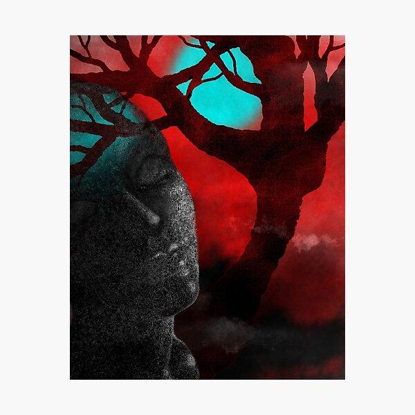 Forest Dream Moonlight Digital Art Photographic Print