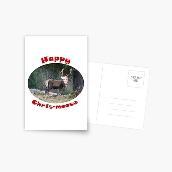 Happy CHRIS-MOOSE  Postcard