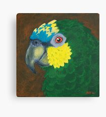 Orange Winged Amazon Parrot Canvas Print