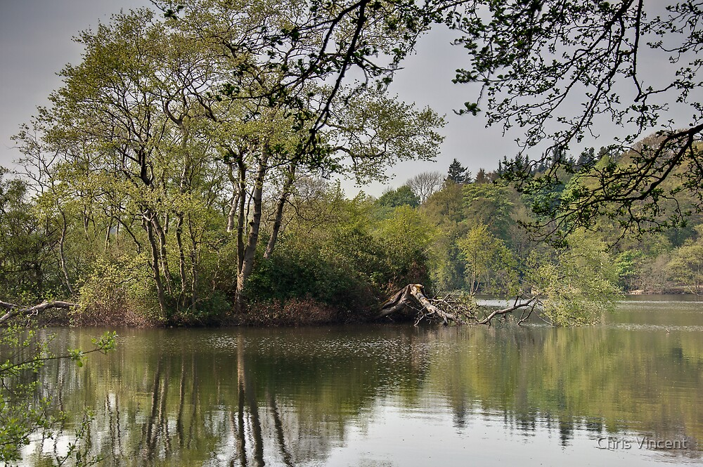 Bolam Lake (1), Northumberland by Chris Vincent