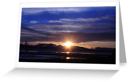 Mare Island Sunset 10 by Lenny La Rue, IPA