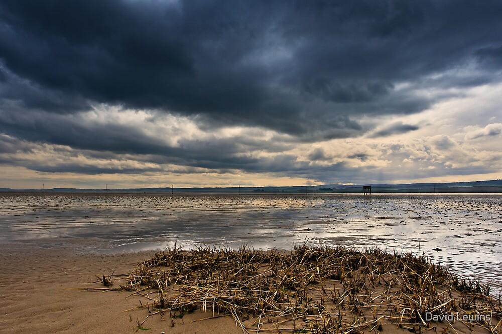 Pilgrim's Path - Lindisfarne, Northumberland. UK by David Lewins