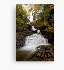 Huron Falls (Autumn) Canvas Print