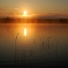 Brilliant April Sunrise by Breanna Stewart