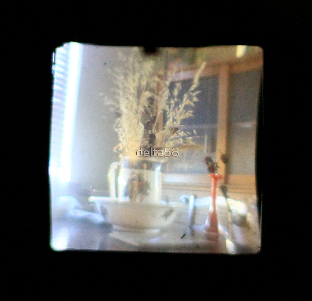 TTV Image ( Through The Viewfinder) by delta58