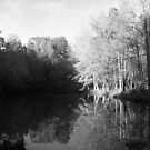 Black and White Evening Pond by Jimmy Durham