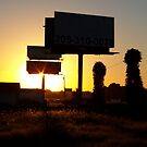 Roadside Billboards at Sunset by Jimmy Durham