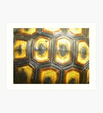 Angulate Tortoise Shell Art Print