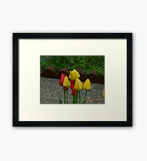 Yellow and Red Tulups Framed Print
