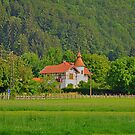 Baby Castle at Countryside by Daidalos