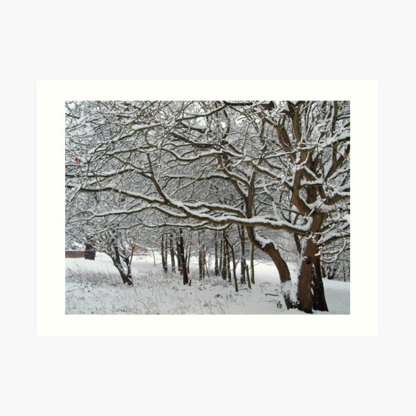 Snow Tree Lattice Art Print