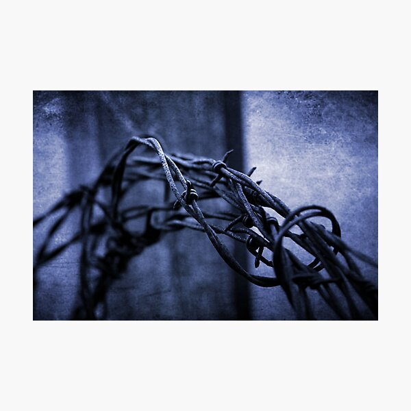 Tangled Up In Blue Photographic Print