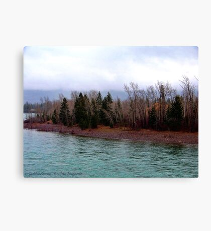 Little Signs of Spring Canvas Print