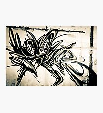 Lillesden Graffiti #1 Photographic Print