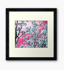 Bubblegum Skies Framed Print