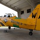 North American SNJ-6 Texan (Warbird Adventures) by Pirate77
