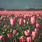 Spring Day by Rebecca Lefferts